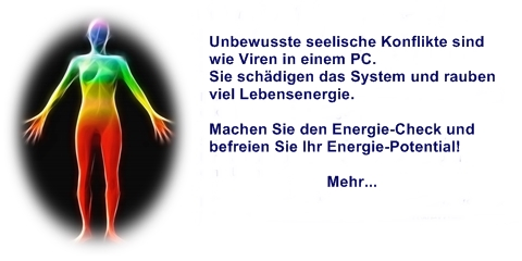 Energie-Check